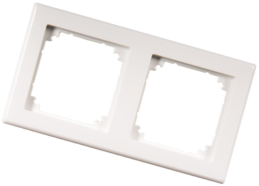 NEETS 2-GANG FRAME FOR SURFACE-MOUNT POLAR_0